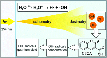 At the crossroad of photochemistry and radiation chemistry: formation of hydroxyl radicals in diluted aqueous solutions exposed to ultraviolet radiation