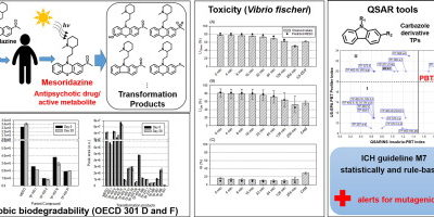 Combination of experimental and in silico methods for the assessment of the phototransformation products of the antipsychotic drug/metabolite Mesoridazine