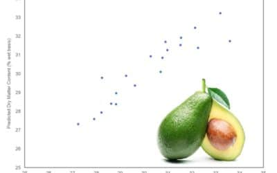 Application Note – Predicting Ripeness of Avocados with a Near-Infrared Spectrometer System