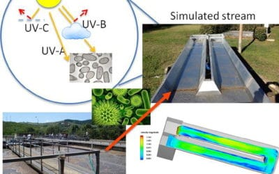 Simulating the fate of indigenous antibiotic resistant bacteria in a mild slope wastewater polluted stream