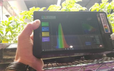 Spectrometer Application Note: How do Different Light Sources Affect Crops?