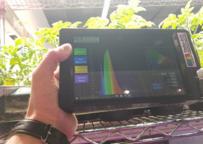 StellarRAD Handheld SpectroRadiometer measuring crops