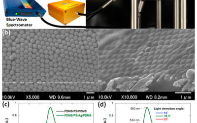 Strongly Iridescent Hybrid Photonic Sensors Based on Self-Assembled Nanoparticles for Hazardous Solvent Detection